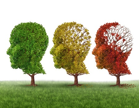 Common Questions About Dementia and Alzheimers